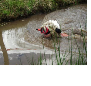 A bog snorkeler from 2013- great sheep costume