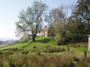 crumbling old farm house majestic on hill top