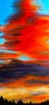 Tangerine Dream - Acrylic on Canvas, original artwork