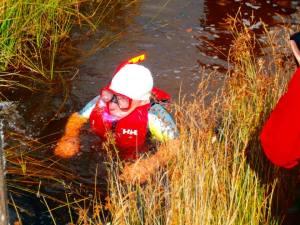 warwick bog snorkelling