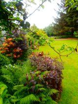OLYMPUSour garden DIGITAL CAMERA