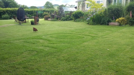 CROESO in the lawn to welcome visitors