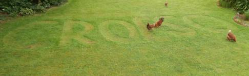 CROESO is welcome in Welsh - mowed into our lawn