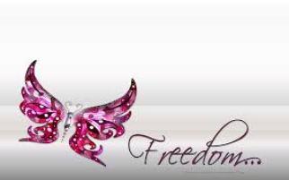 freedom butterfly