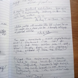 visitor comments (3)
