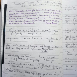 visitor comments (4)